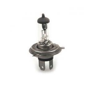 H4 LAMP H4 12V 55/60W WHITE