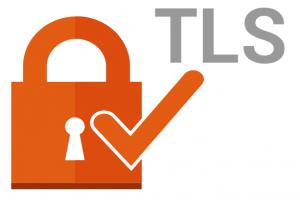 Conexión protegida por TLS1.2